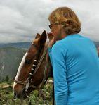 horse whispering elin